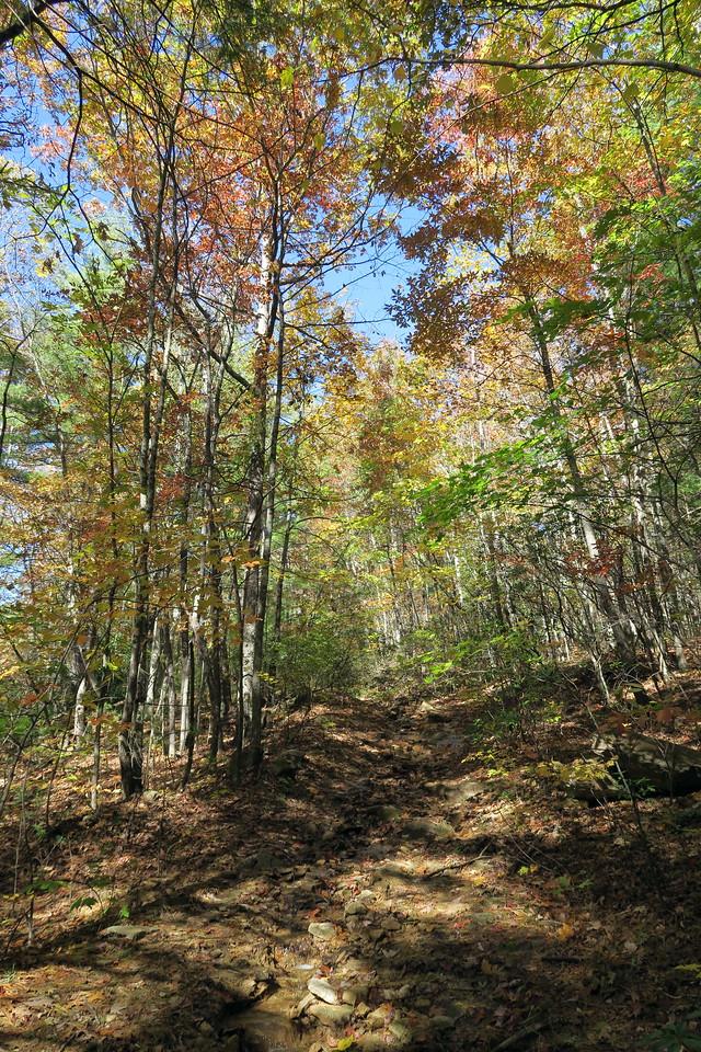 Stone Mountain Trail --  3,050'