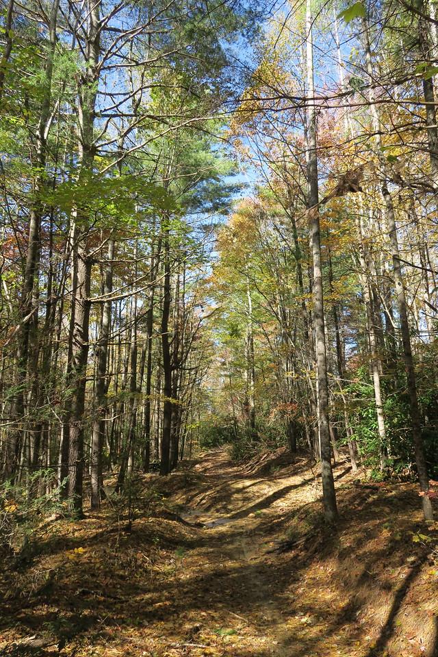 Rocky Ridge Trail --  2,950'
