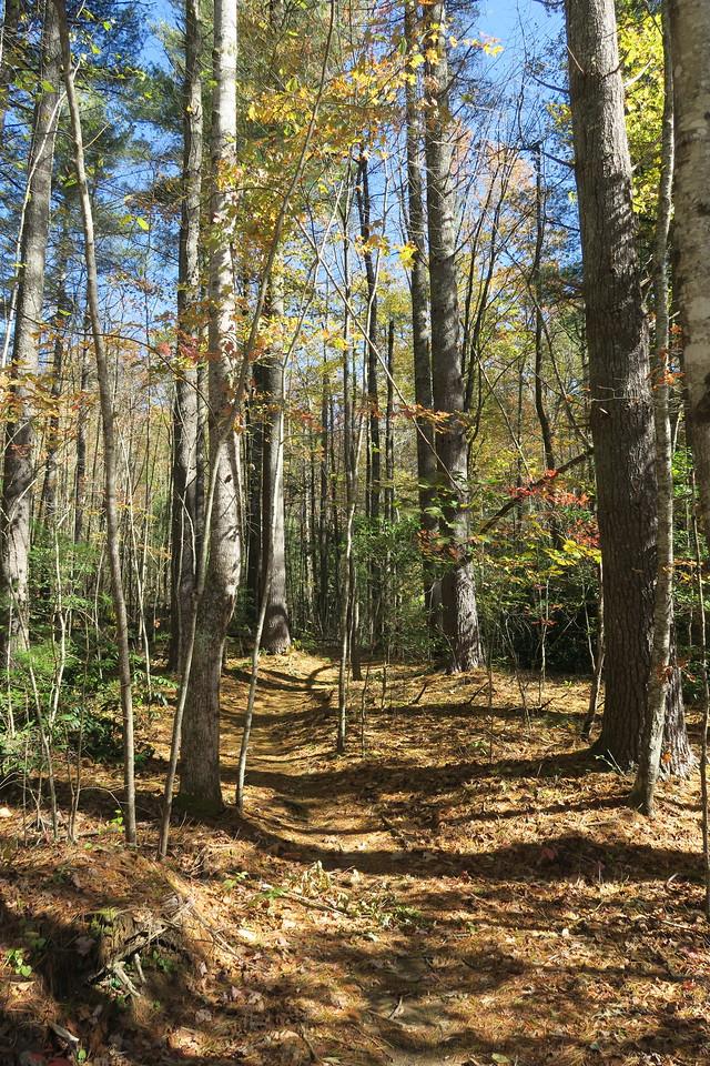 Rocky Ridge North Trailhead --  2,500'