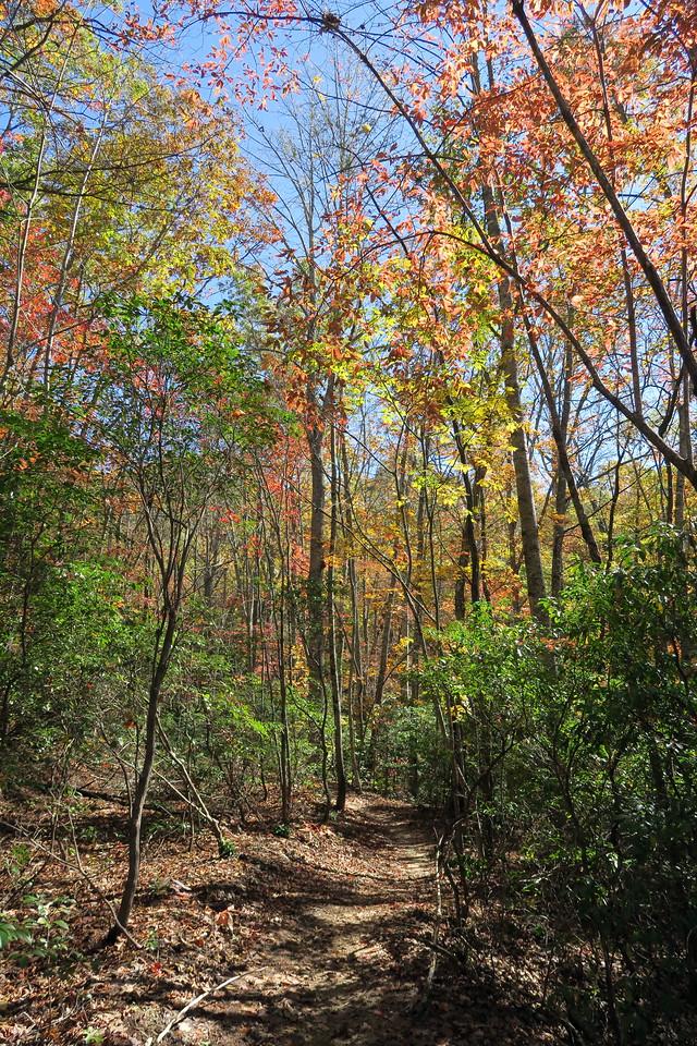 Rocky Ridge Trail --  2,800'