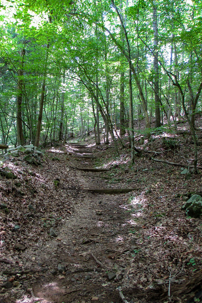 Holdens Mill Spur Trail