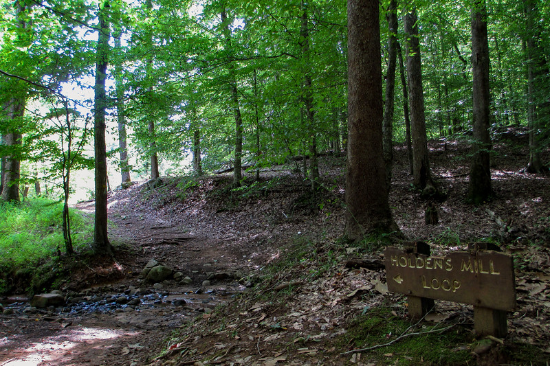 Holden Mill Trail