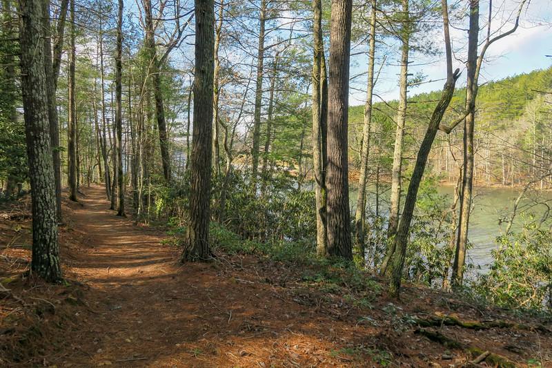 Fonta Flora Trail