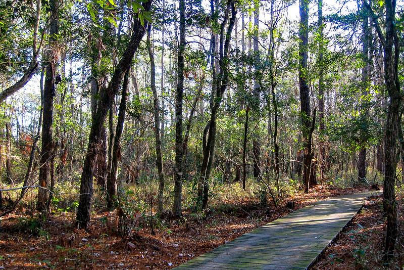 Tar-Kiln Trail