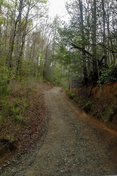 Chestnut Mountain Road @ Turkeypen Gap