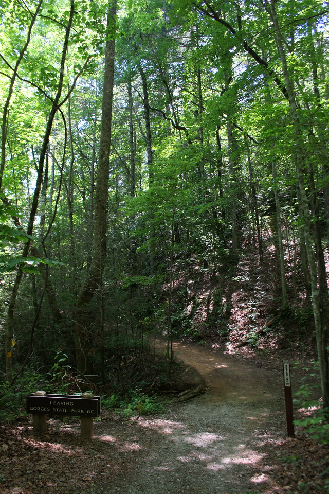 About half way down the trail leaves Gorges State Park and enters Pisgah National Forest...