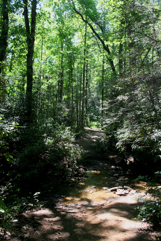 Back on the main trail, you cross a small stream before bottoming out at the Horsepasture River...