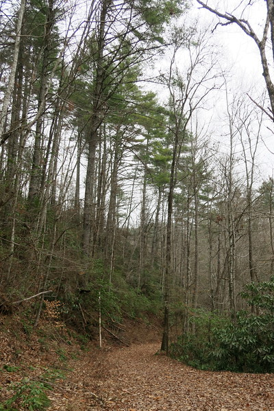 Auger Hole Trail -- 1,580'