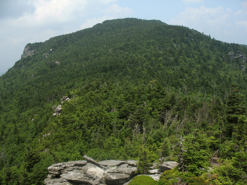 Looking up at Calloway Peak(5964'), highest of Grandfathers' peaks, as I descend to Calloway Gap.