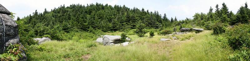 Alpine Meadow Backcountry Campsite