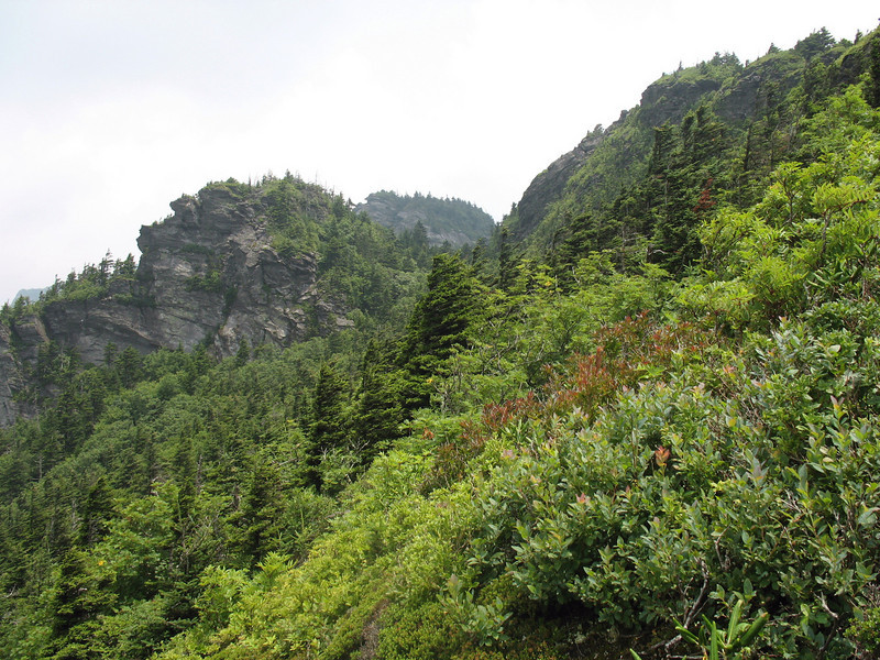 The Rugged Ridge