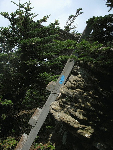One of the two or three small ladder that help you over the boulders atop Calloway Peak.