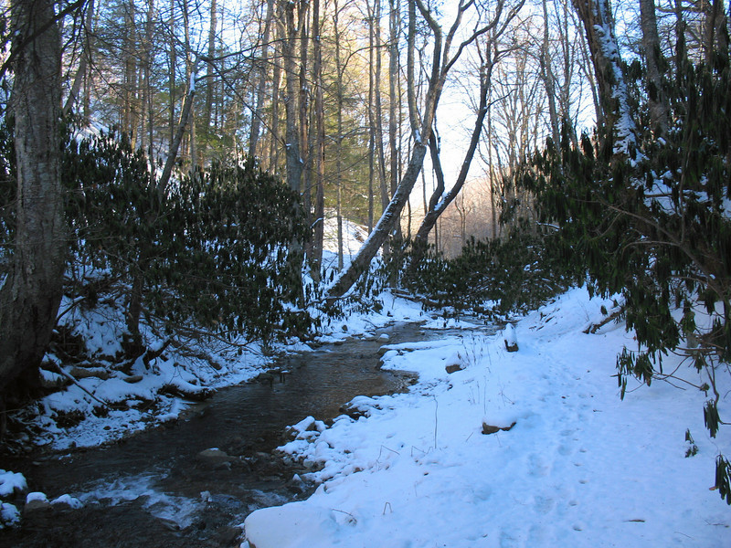 The first section of trail is relatively flat, following the banks of the Watauga River.