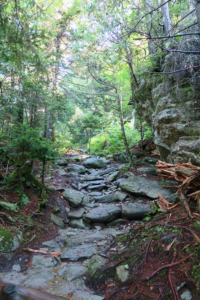 Grandfather Trail -- 5,400'