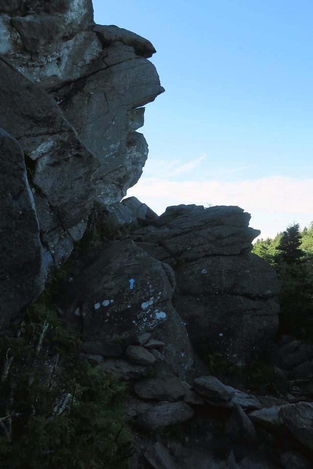 Grandfather Trail -- 5,350'
