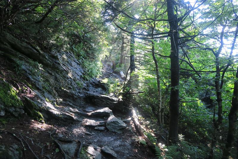 Grandfather Trail -- 5,320'