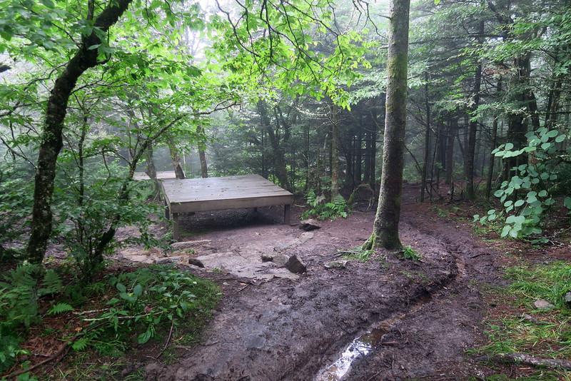 Calloway Gap Campsite -- 5,606'
