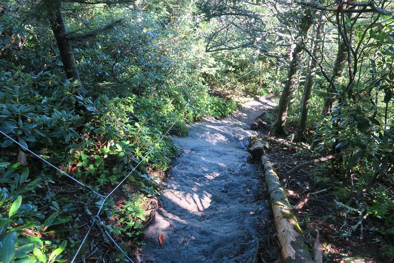 Grandfather Trail -- 5,380'