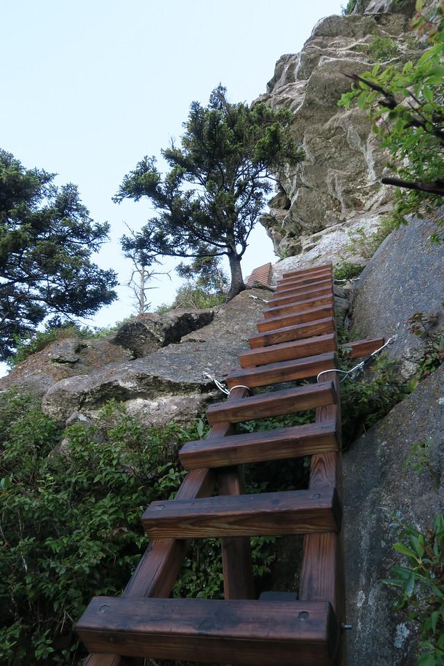 Grandfather Trail -- 5,680'