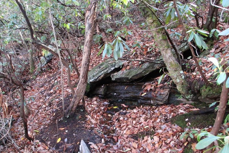 Magnolia Springs Trail - 1,800'
