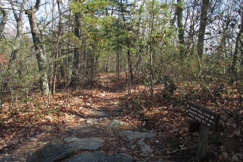 Wolf Rock Trail - 1,980'
