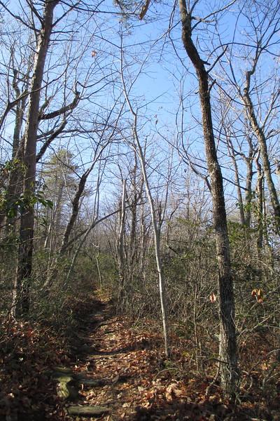 Magnolia Springs Trail - 1,840'