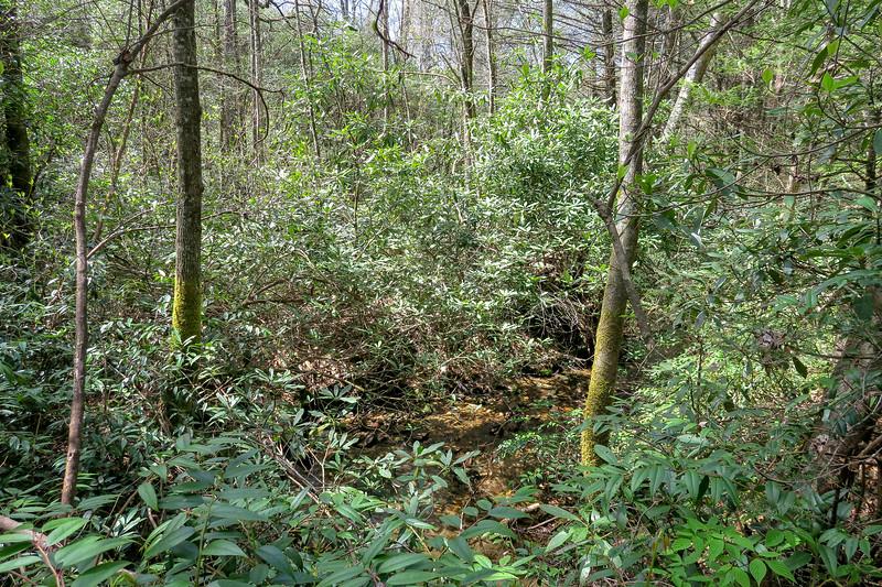 Jane Cantrell Creek -- 2,630'