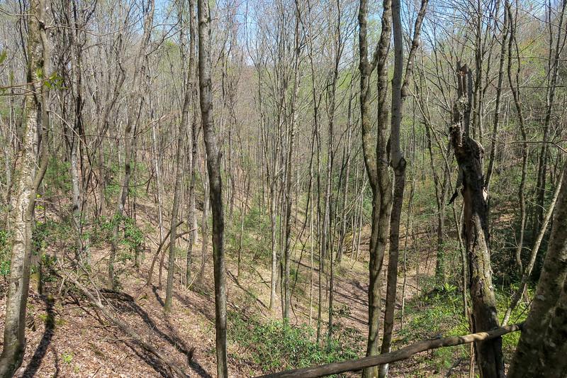 Gordon Mountain Spur Trail -- 2,920'