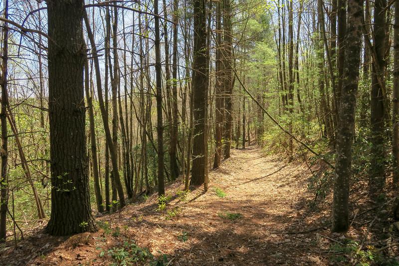 Gordon Mountain Spur Trail -- 2,970'