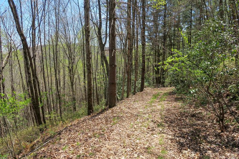 Gordon Mountain Road -- 2,840'