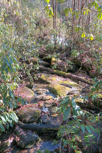 Lower Falls Path -- 2,530'