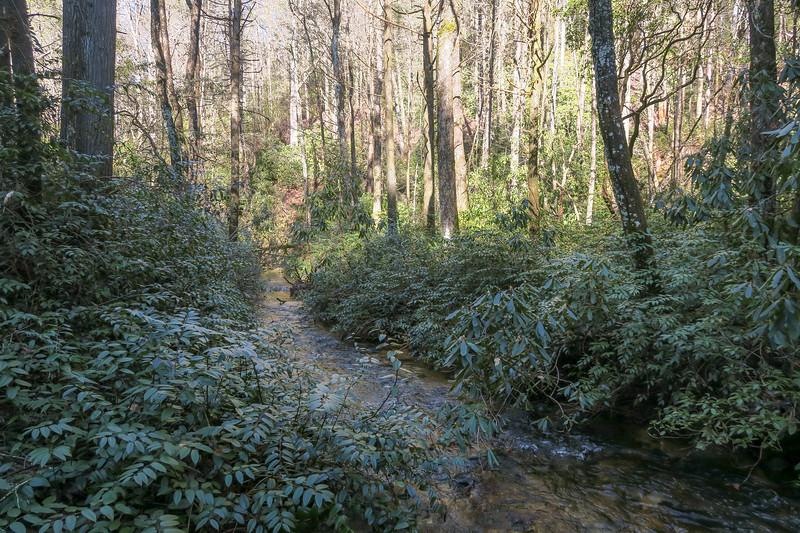 Hickory Flat Creek @ Upper Crossing -- 2,520'
