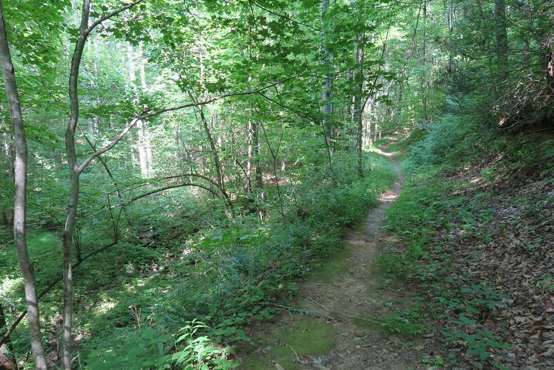 Demonstration Trail