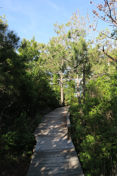 Soundside Nature Trail