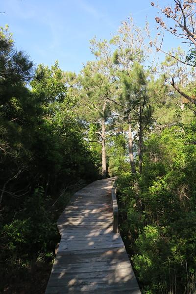 Soundside Nature Trail
