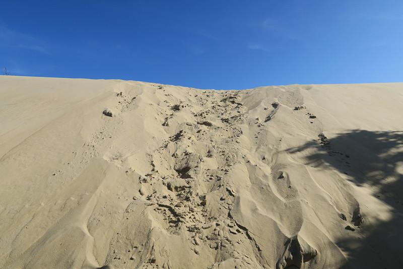 Sand Dunes 'Bushwhack'