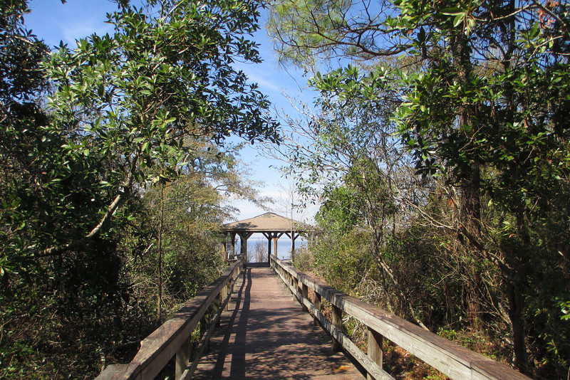 Lake Waccamaw Overlook Trail