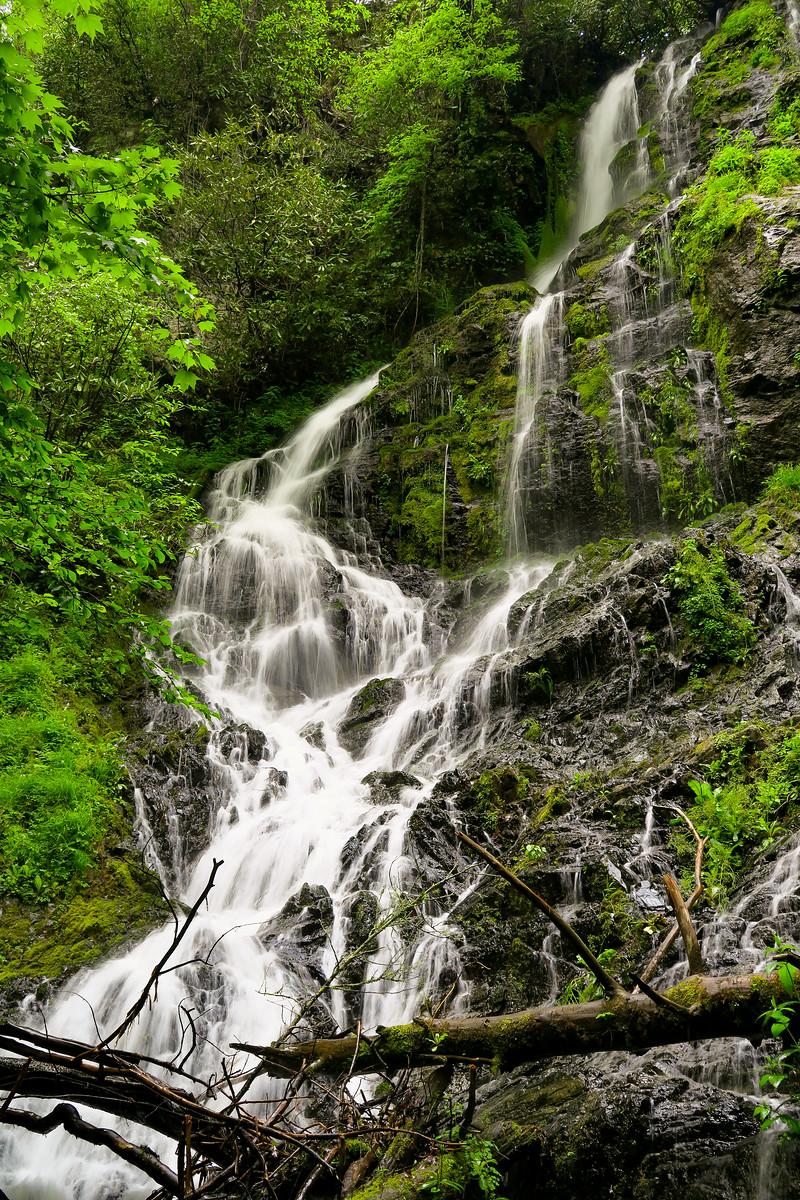 Maple Spring Branch Falls