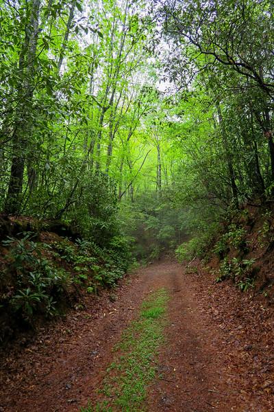 Auger Hole Trail