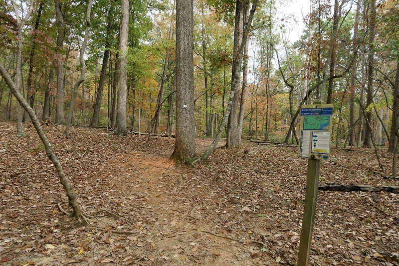 Morrow Mountain-Sugarloaf Trail Junction