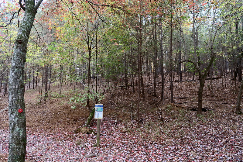 Morrow Mountain-Laurel Trail Junction