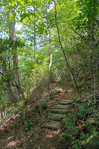 Mountain Ridge Trail -- 4,120'