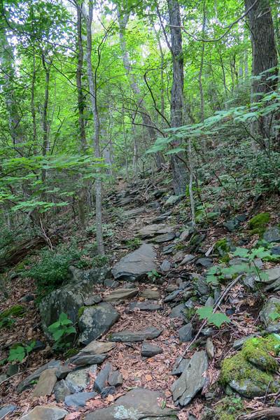 Mountain Ridge Trail -- 4,150'