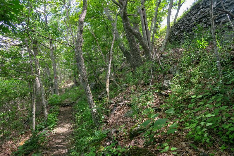 Mountain Ridge Trail -- 4,320'