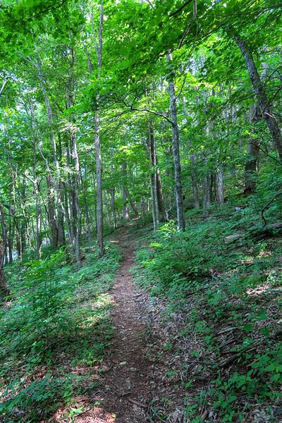 Mountain Ridge Trail -- 3,750'