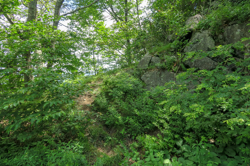 Mountain Ridge Trail (unofficial) -- 4,360'
