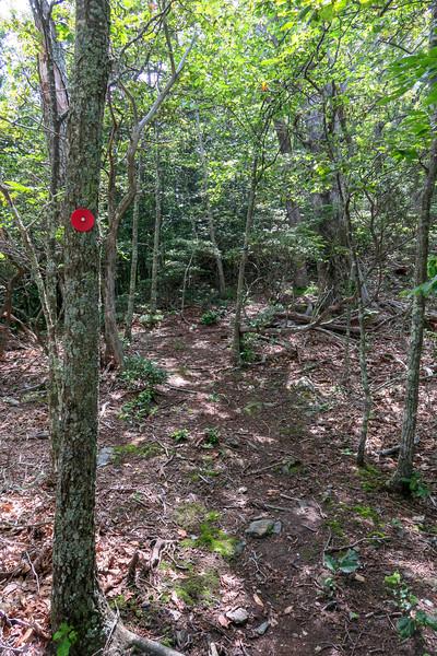 Mountain Ridge Trail (unofficial) -- 4,400'