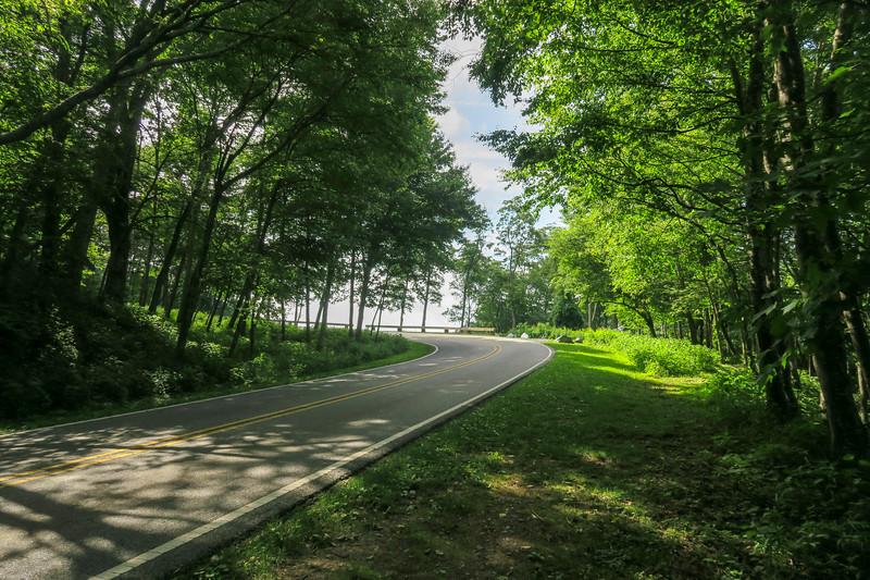 Mountain Ridge Trail -- 4,090'