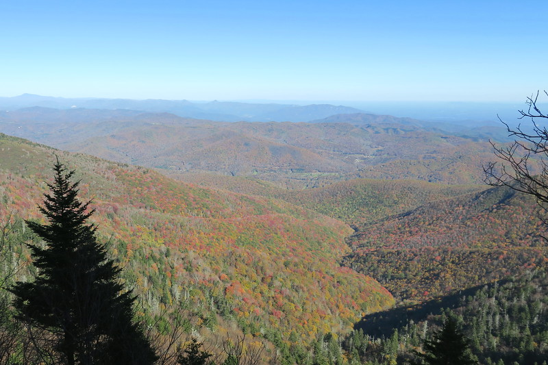 Buncombe Horse Trail -- 5,840'