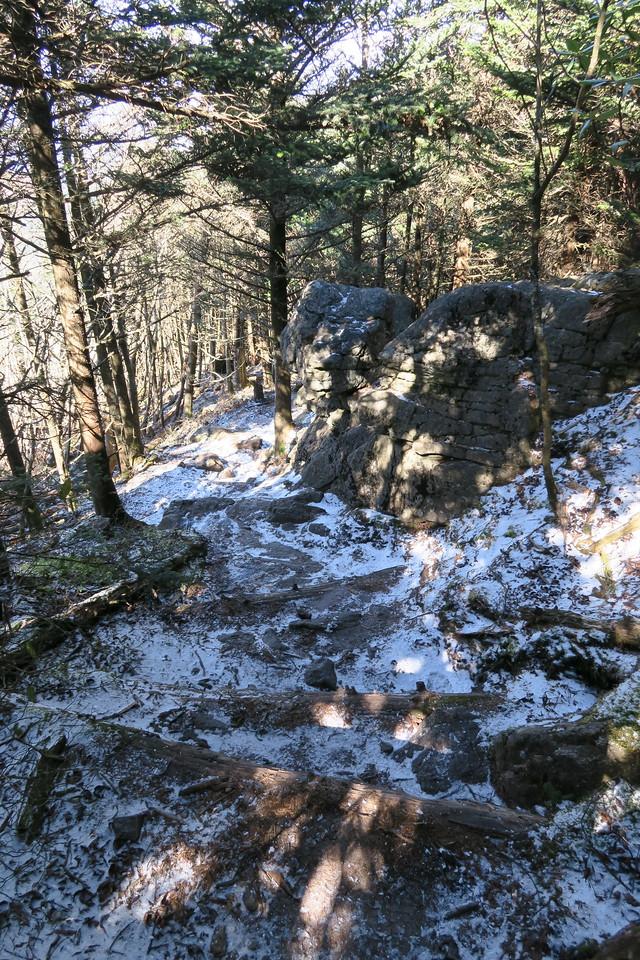 Deep Gap Trail -- 6,500'
